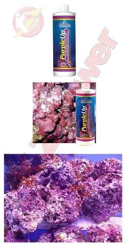 Purple Up Caribsea 8oz 237ml Trata Até 8970 Litros Aquário  - KZ Power