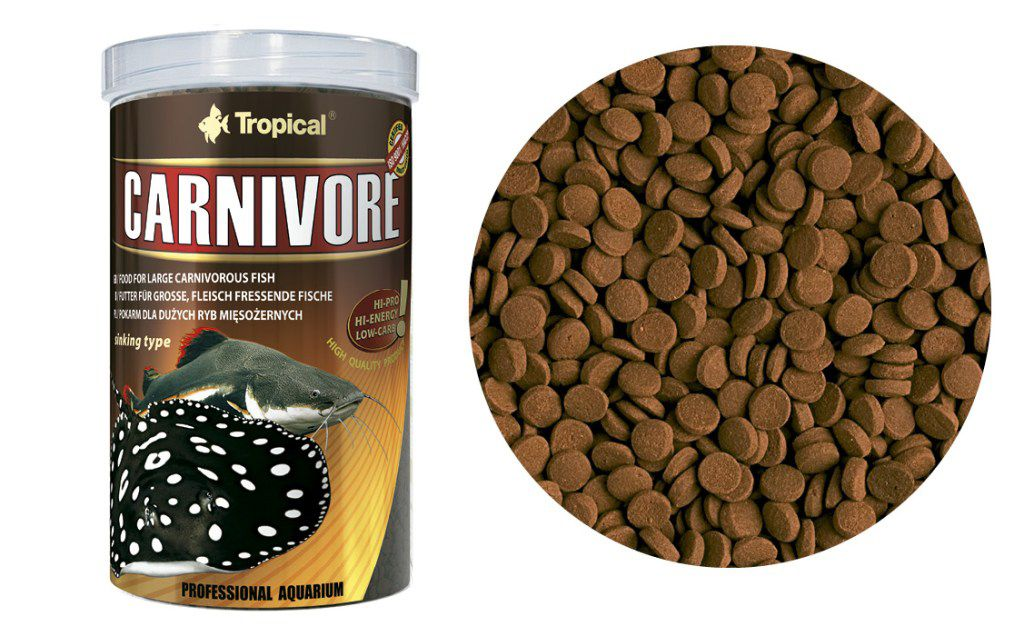 RAÇÃO CARNIVORE 600gr TROPICAL  - KZ Power