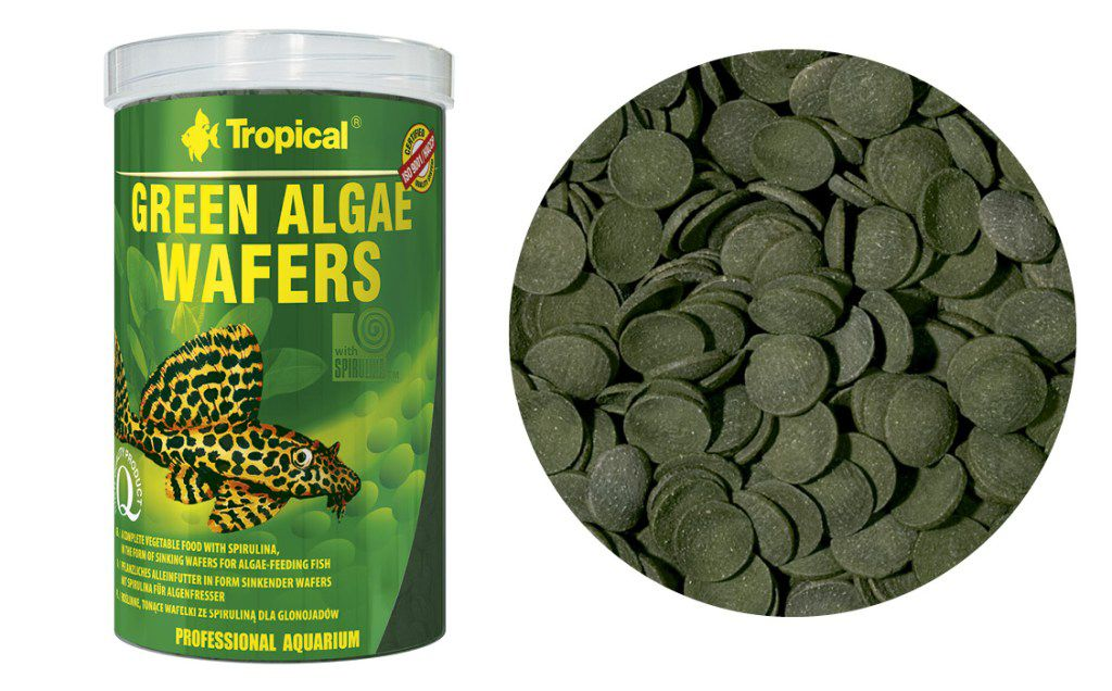 RAÇÃO GREEN ALGAE WAFERS 45gr TROPICAL  - KZ Power