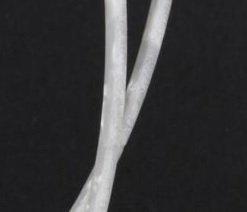 Binding (filete) branco perolado (madrepérola) (150cm x 1,5mm x 1,5mm)  - Luthieria Brasil