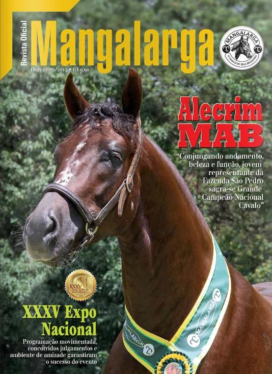 Revista Mangalarga Dezembro 2013  - Boutique Mangalarga