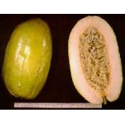 Sementes De Maracujá Gigante Passiflora Quadrangularis Fruta