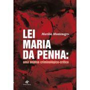 Lei Maria da Penha: uma análise criminológico-crítica
