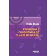 Feminismo e consciencia de classe no brasil
