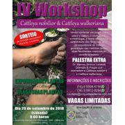 IV Workshop - Cattleya nobilior & Cattleya walkeriana