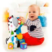 Zebra com Blocos Surpresa Fisher Price - Mattel