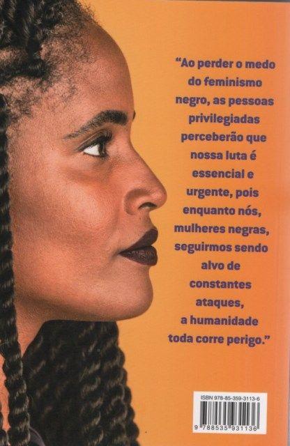 Quem Tem Medo do Feminismo Negro?  - LiteraRUA