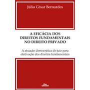 A EFICÁCIA DOS DIREITOS FUNDAMENTAIS NO DIREITO PRIVADO: A ATUAÇÃO DEMOCRÁTICA DO JUIZ PARA EFETIVAÇÃO DOS DIREITOS FUNDAMENTAIS <br> Júlio César Bernardes