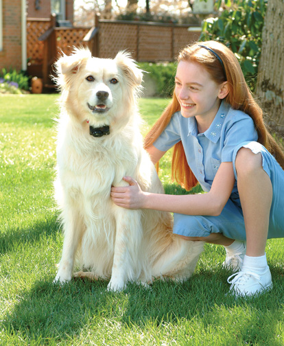 Cerca Virtual Wireless Para Cães E Gatos Pet Safe