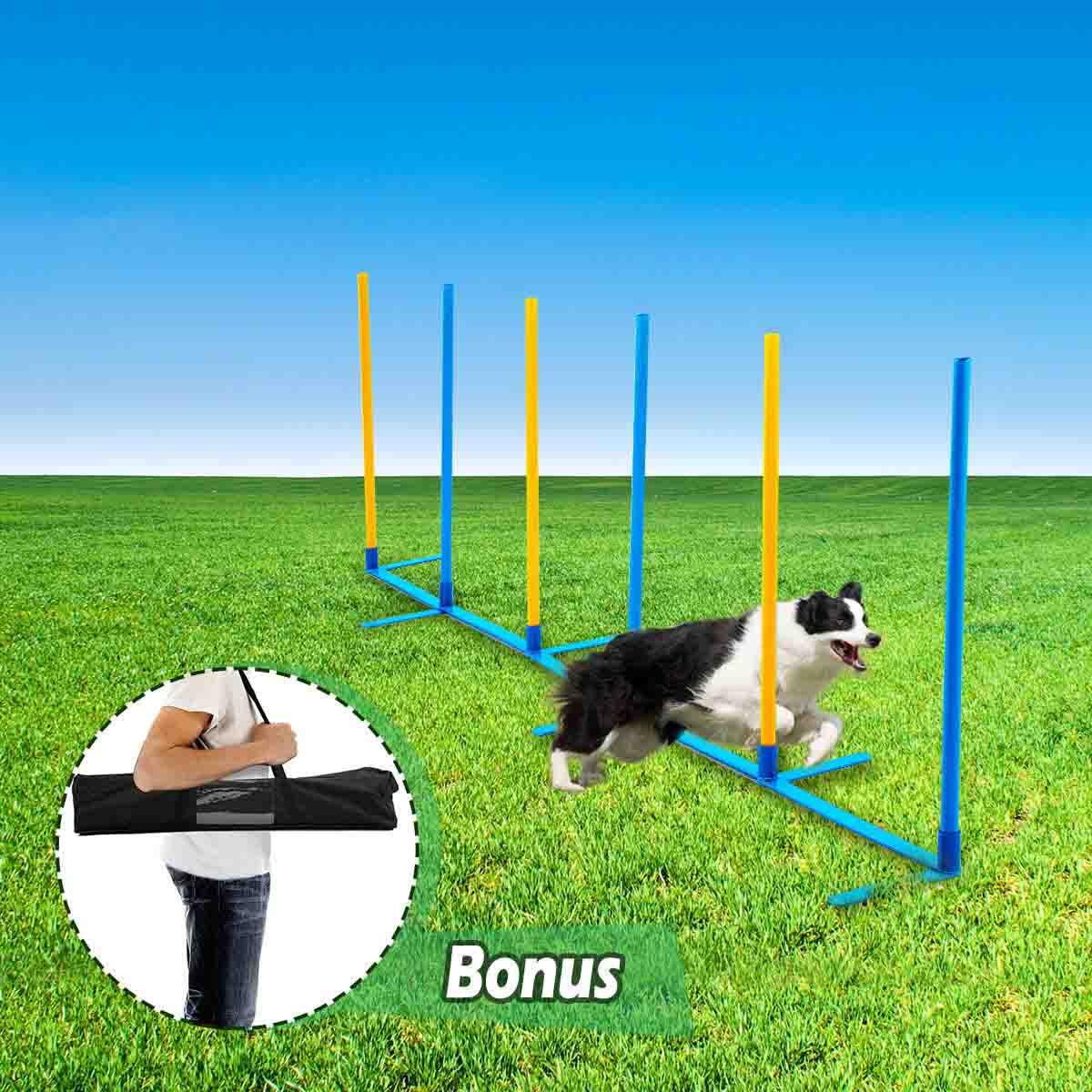 Zig Zag Baixo Agility para Treinamento Canino Eleva Mundi