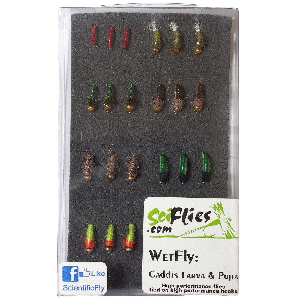 Kit de Moscas Wet Fly Caddis Larva & Pupa SciFlies