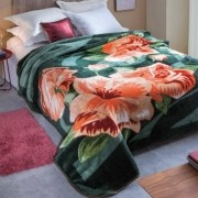 Cobertor Microfibra Casal Dyuri Cinta Cortezo Verde Jolitex