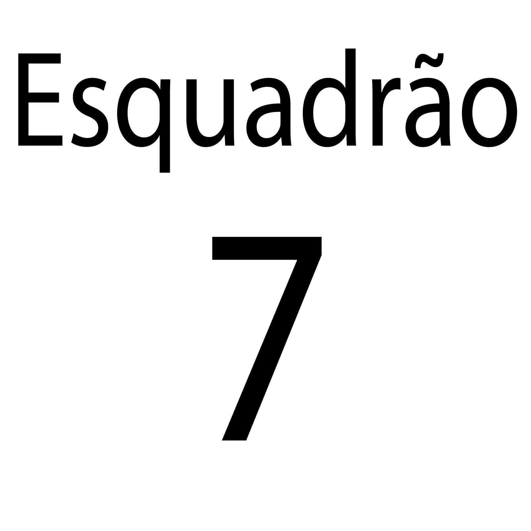 Esquadrão 7