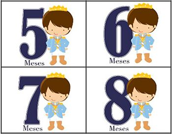 Body mesversario príncipe kit com 12 bodies