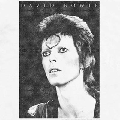 Camiseta David Bowie Ziggy Stardust