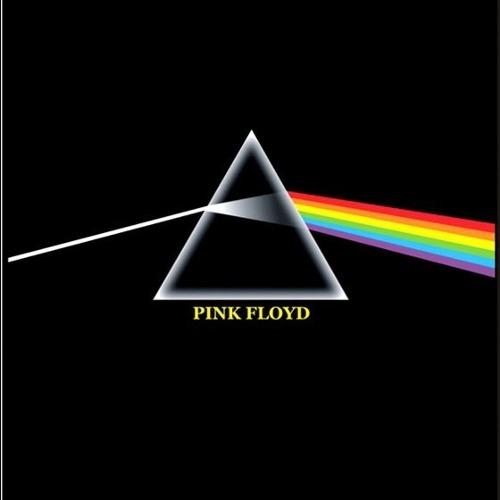 Camiseta Pink Floyd Dark Side Of The Moon Prisma
