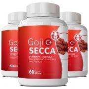 Goji Secca C+ | Original - Compre 2, Leve 3
