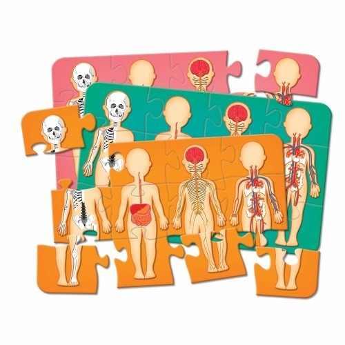 Jogo Perguntas E Respostas + Quebra-cabeça - Corpo Humano
