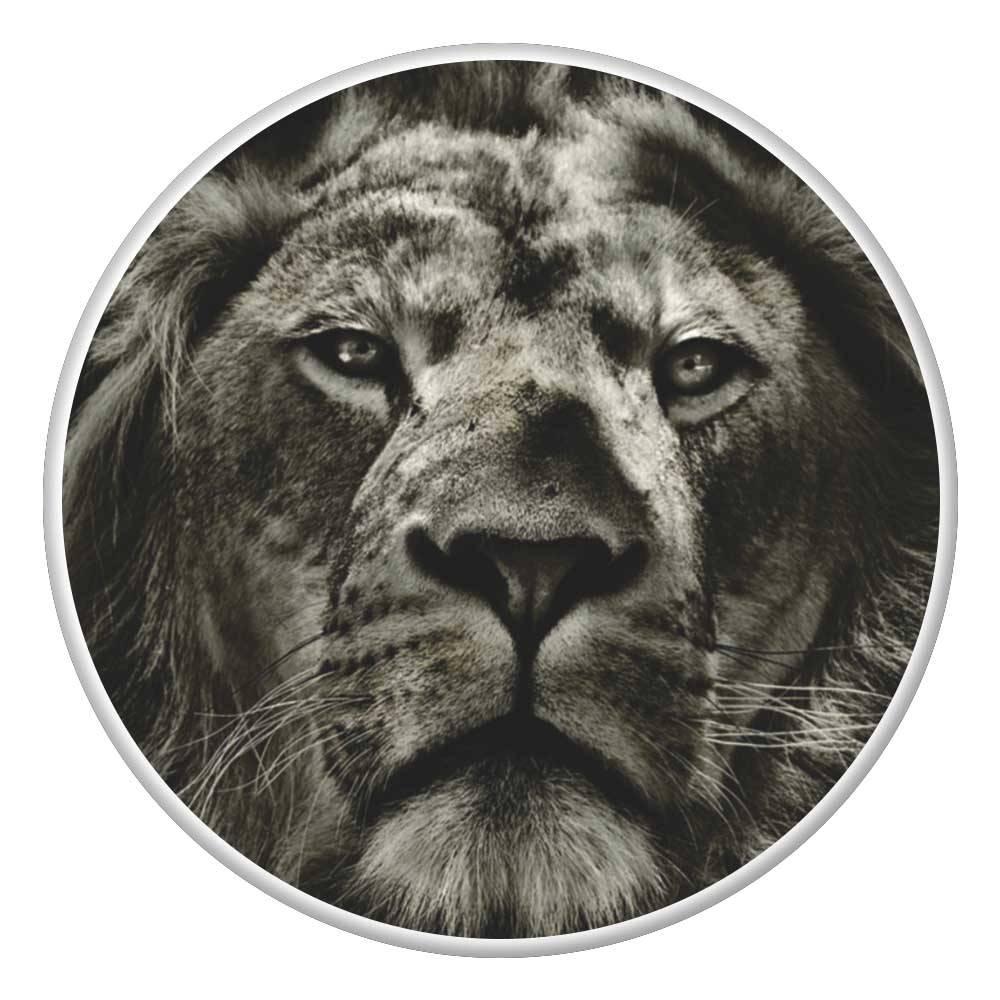 Popsockets Personalizado Suporte para Celular Leão