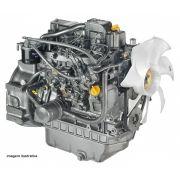 Motor Yanmar 4TNV 4TNE