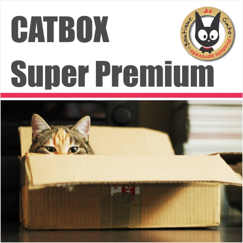 Cat Box Surpresa