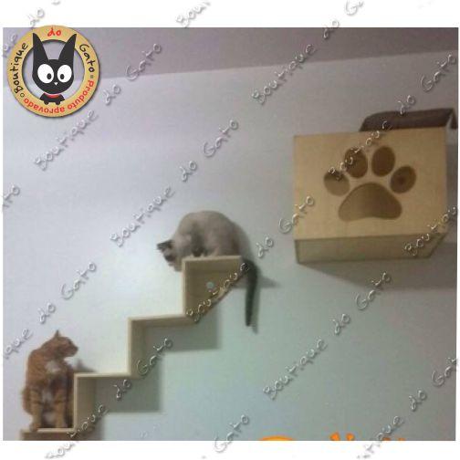 Módulo do Gato