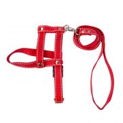 Peitoral e Guia para Cães Pontilhada Cor Vermelha - BAW WAW