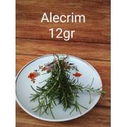 Alecrim Orgânico 15 g  Rancho Ecológico