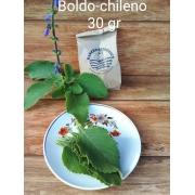 Chá - Folhas de Boldo Chileno Orgânico -30g - Rancho Ecológico