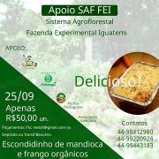 ESCONDIDINHO DE MANDIOCA - APOIO AO SISTEMA AGROFLORESTAL DA UEM!  1kg  =  6 PESSOAS -  R$ 50,00
