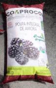POLPA ORGÂNICA DE AMORA - 1Kg