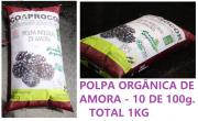 POLPA ORGÂNICA DE AMORA 10 SACHES DE 100g - TOTAL 1Kg