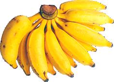Banana Prata Orgânica 1kg