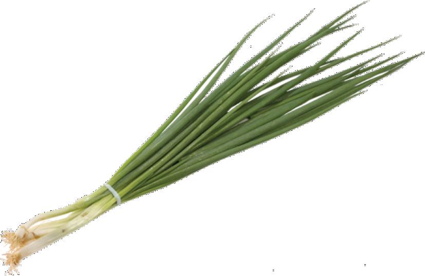 Cebolinha Verde