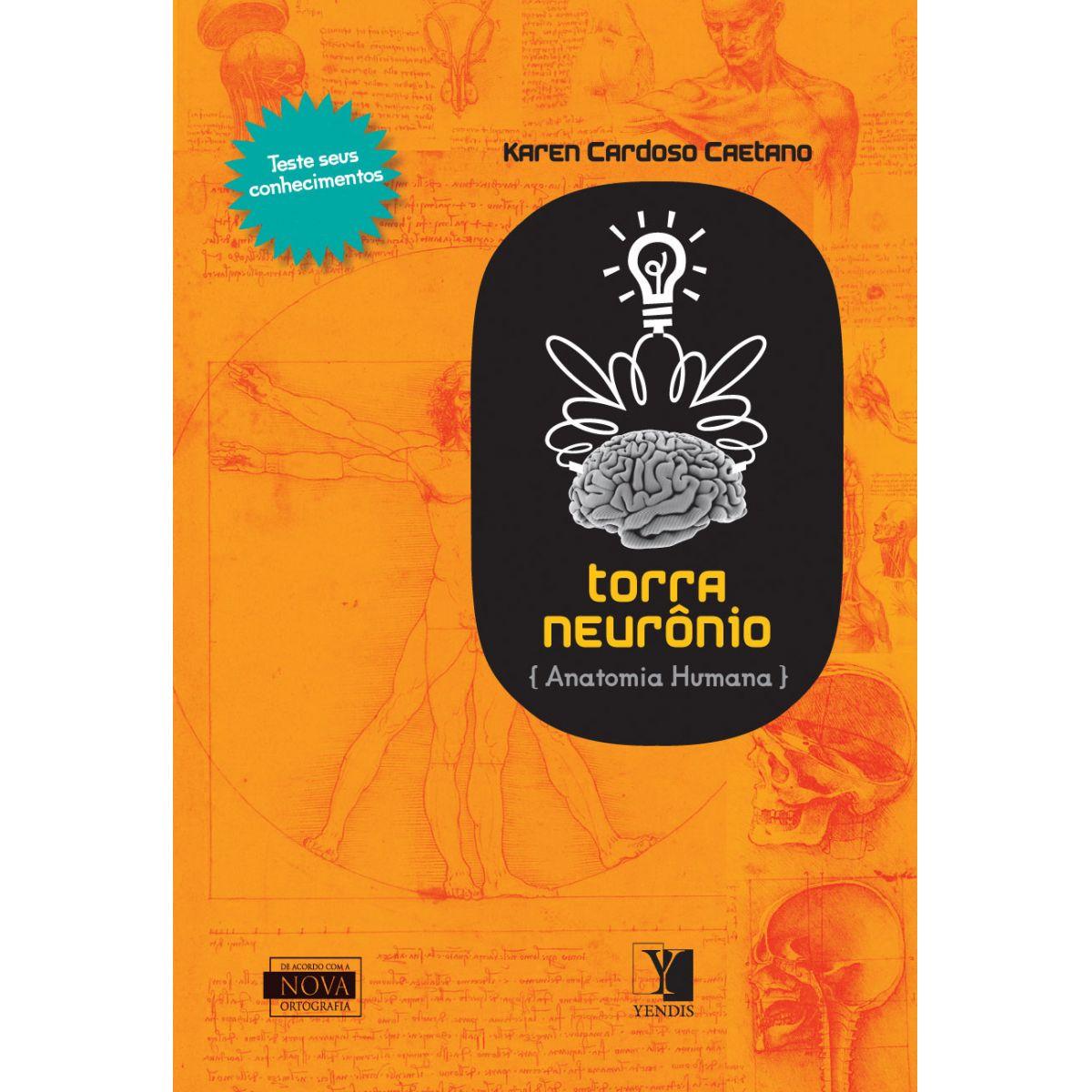 Torra Neurônio: anatomia humana