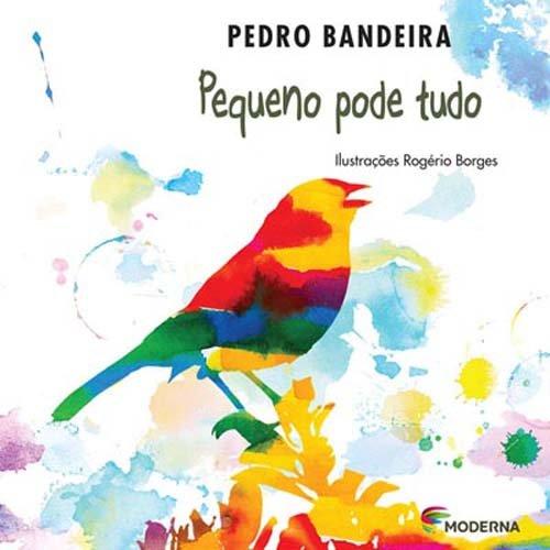PEQUENO PODE TUDO - PEDRO BANDEIRA