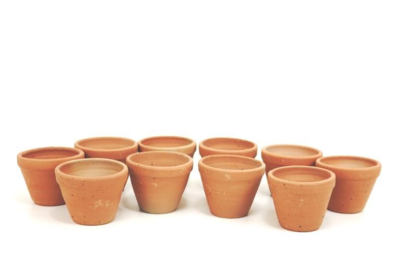 Vaso oval ceramica para mini suculentas Kit com 10  (AxLxC) 7,5x6,5 Mais Brinde (2 Mini Suculenta)