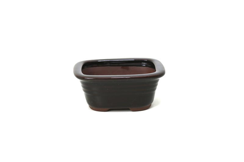 Vaso Oval - Literato - medidas externas - (AxLxC) 5x11x14 cm