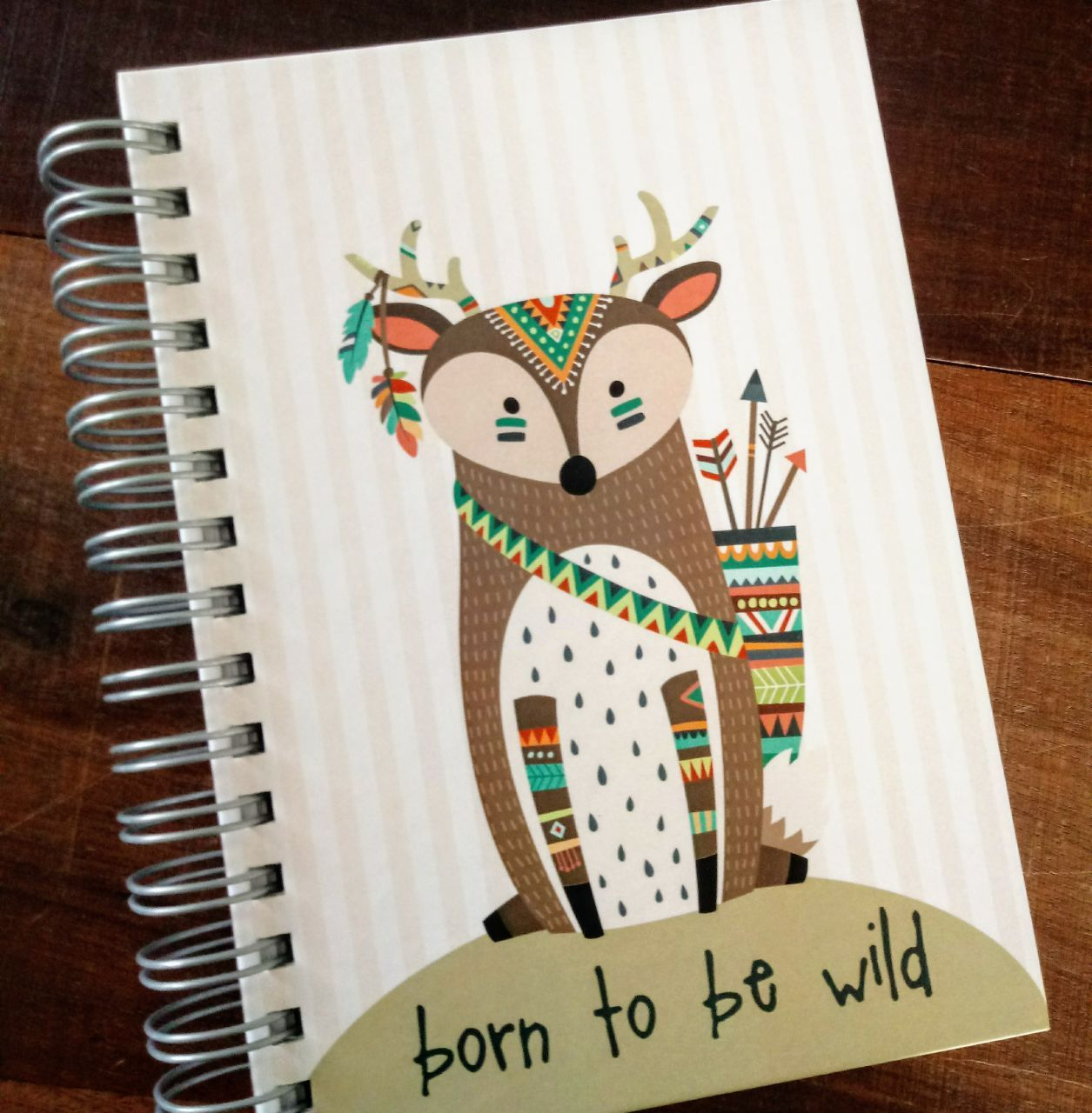 Agenda Born to be wild - Raposa
