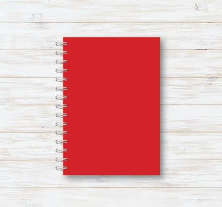 Caderno Rosas II