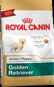 Ração Royal Canin Golden Retriever Junior 12 Kilos