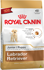 Ração royal canin Labrador retriever Junior 12 kilos