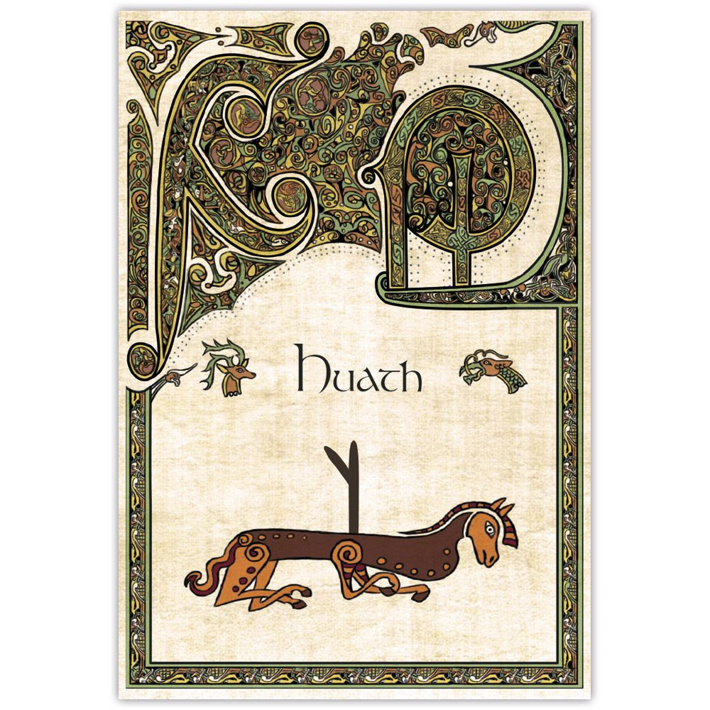 Baralho Ogam - O Oráculo Celta das Árvores