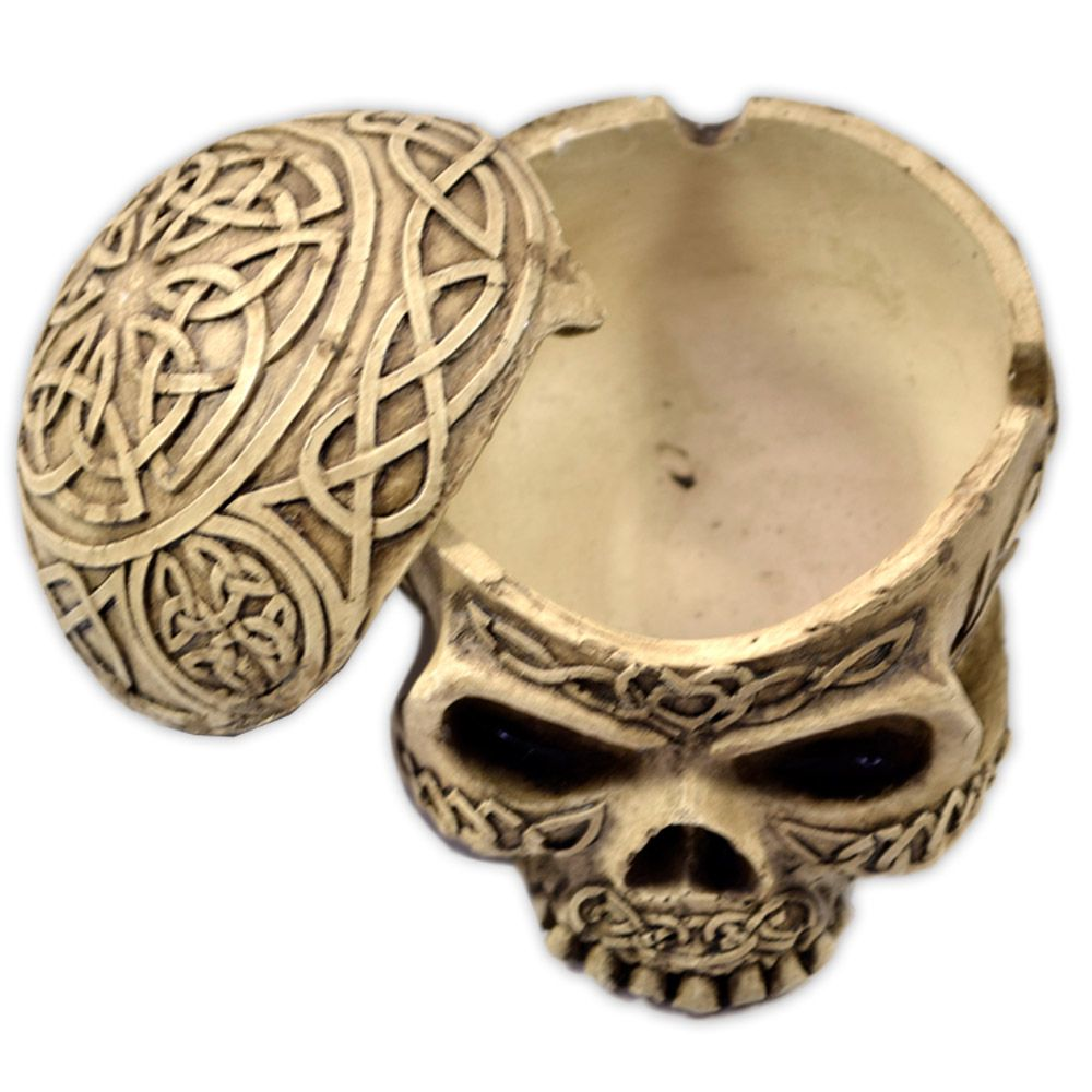 Crânio - caixa