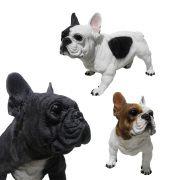 Cachorro Bulldog Frances Decorativo Cao Pintura Realista Resina Casa  Jardim