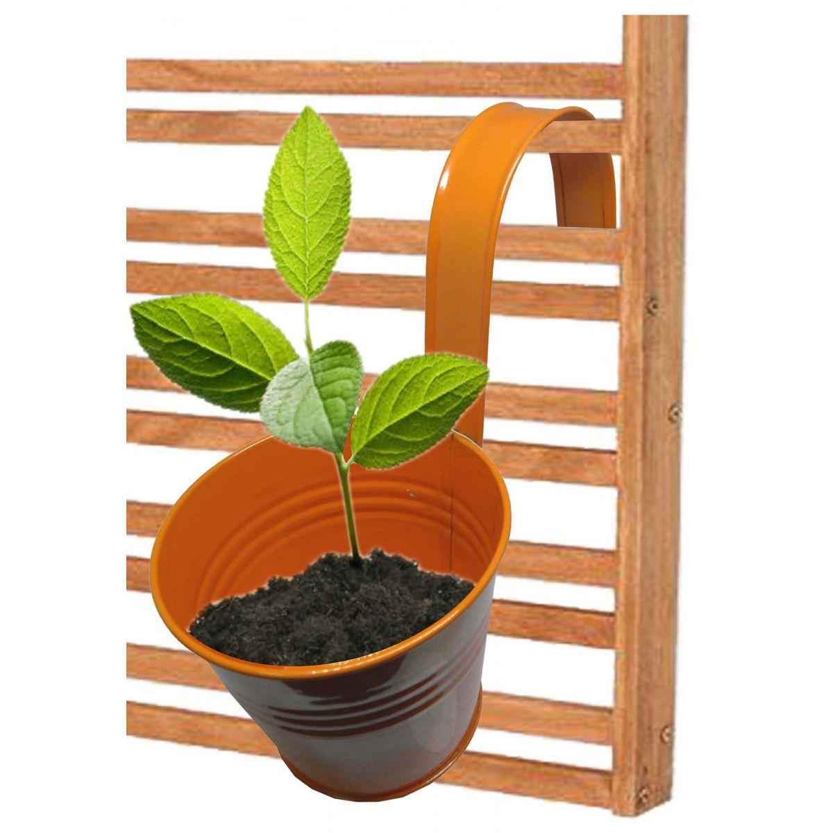 Kit 4 Unid Cachepot De Metal Para Jardim Vertical Suspenso Planta Flor Abobora (CACHEPO-1)