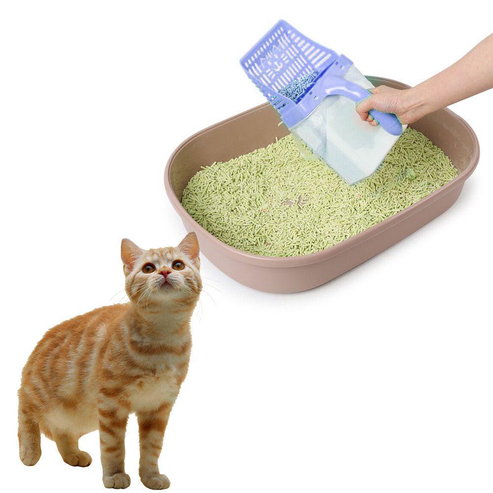 Pa Coletora Fezes Cachorro Gato Pazinha Areia Higienica Pet Lixeira Peneira Azul