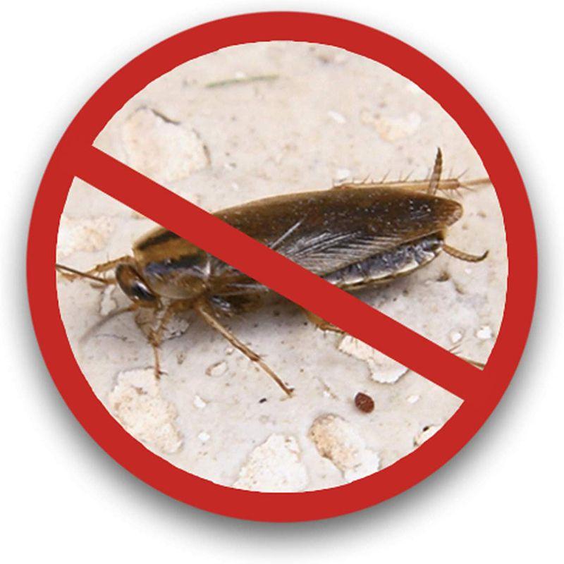 Repelente 3 em 1 Eletronico 300 Metros Roedores Insetos Baratas Ratos Anti Mosquitos dengue