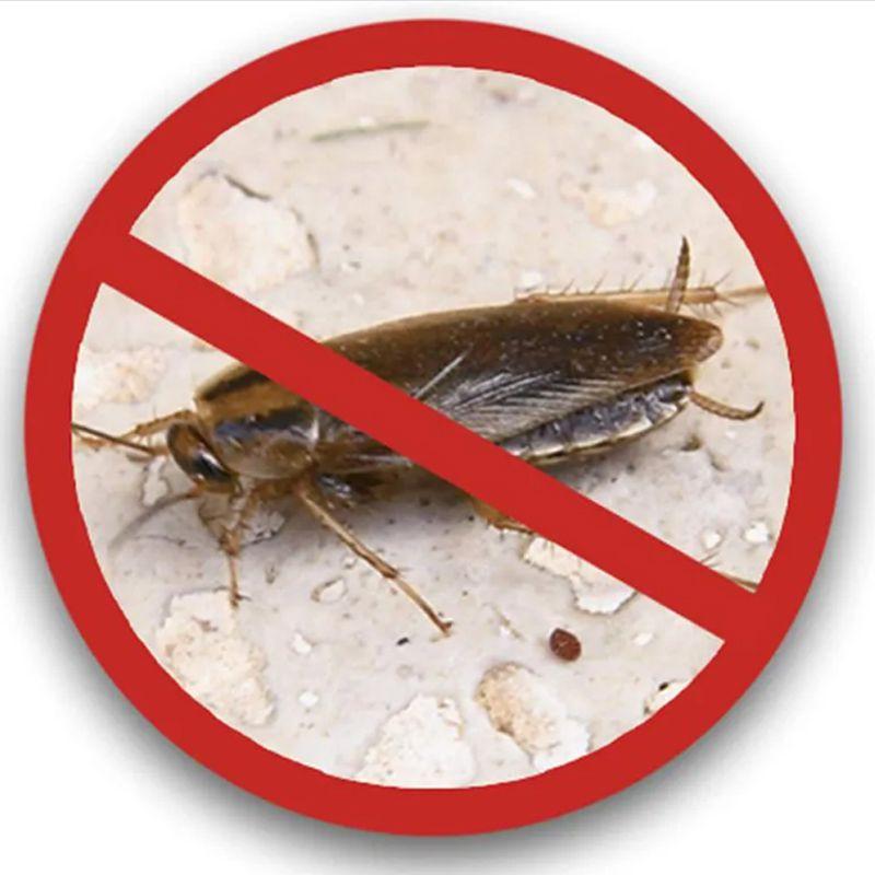 Repelente Eletronico kit 2 uni Roedores Insetos Baratas Ratos Anti Mosquitos dengue