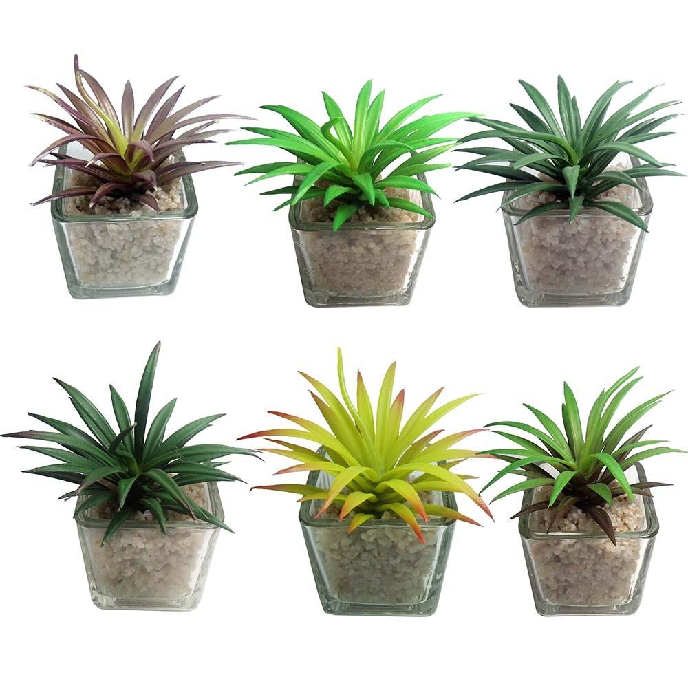 Suculenta mini planta artificial com vaso de vidro mudas - Planta artificial ...